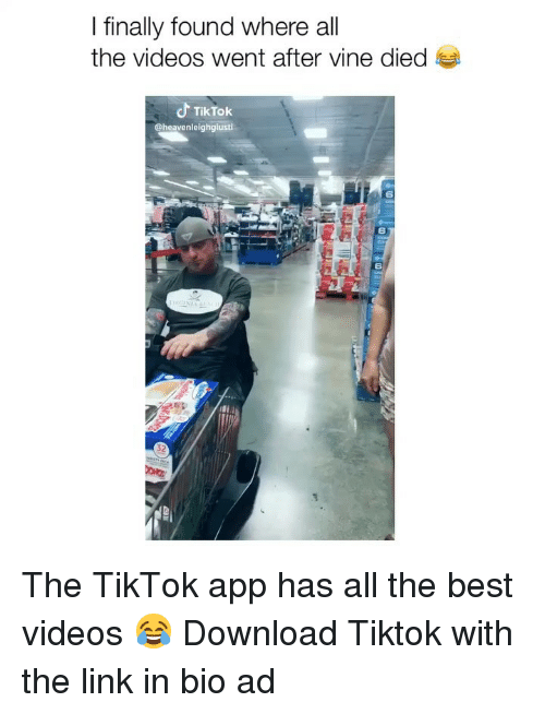 Memes, Videos, and Vine: I finally found where all  the videos went after vine died  TikTok  @heavenleighgiusti  6  6  6 The TikTok app has all the best videos 😂 Download Tiktok with the link in bio ad