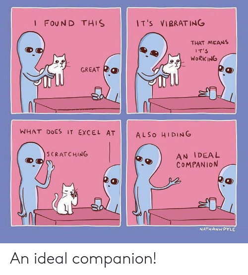 Work, Excel, and What Does: I FOUN D THIS  I T 's  VIBRATING  THAT MEANS  IT'S  WORK ING  冫웃  GREAT  均  WHAT DOES IT EXCEL AT  AL So HIDING  AN IDEAL  COMPANION  S CRATCHING  NATHANWPYLE An ideal companion!