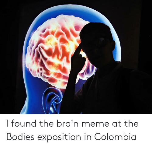 exposition: I found the brain meme at the Bodies exposition in Colombia