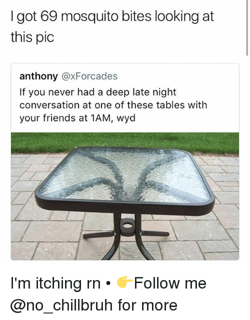 mosquito bites: I got 69 mosquito bites looking at  this pic  anthony @xForcades  If you never had a deep late night  conversation at one of these tables with  your friends at 1AM, wyd I'm itching rn • 👉Follow me @no_chillbruh for more