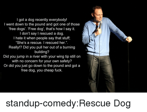 """Pull Her: I got a dog recently everybody!  I went down to the pound and got one of those  free dogs'. 'Free dog', that's how I say it.  I don't say I rescued a dog.  I hate it when people say that stuff,  """"She's a rescue. I rescued her."""".  Really!? Did you pull her out of a burning  building?  Did you jump in a river with your wing tip still on  with no concern for your own safety?  Or did you just go down to the pound and got a  free dog, you cheap fuck.  3 standup-comedy:Rescue Dog"""