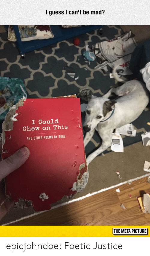 Dogs, Tumblr, and Blog: I guess I can't be mad?  I Could  Chew on This  AND OTHER POEMS BY DOGS  THE META PICTURE epicjohndoe:  Poetic Justice