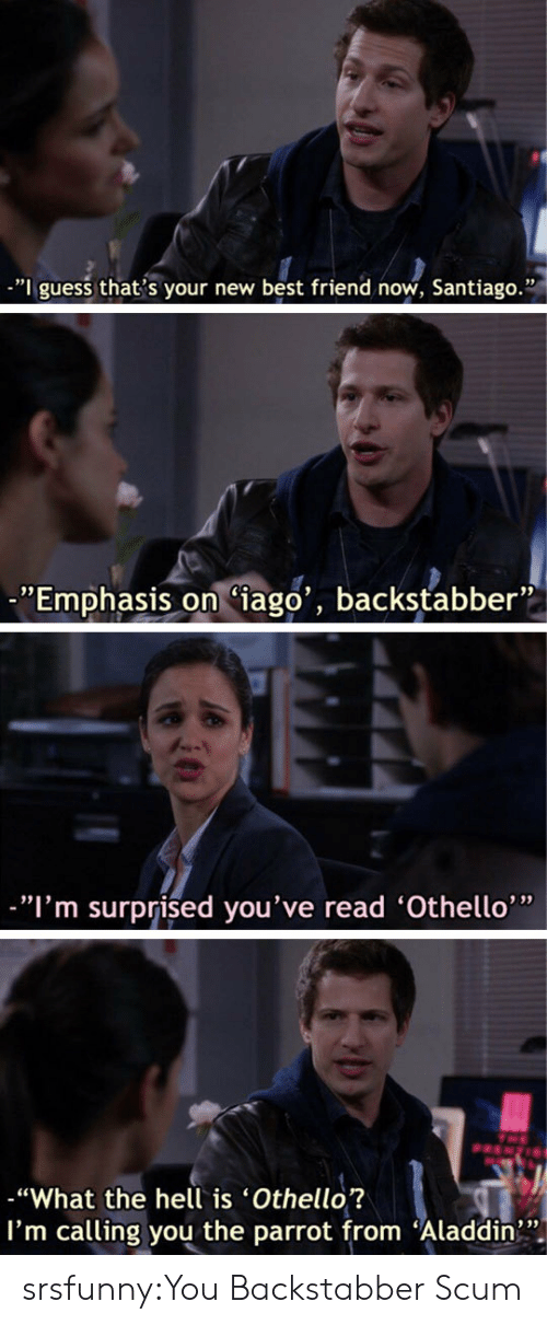 "Im Surprised: -""I guess that s your new best friend now, Santiago.""  ""Emphasis on Ciago', backstabber""  ""I'm surprised you've read 'Othello'""  ""What the hell is 'Othello?  I'm calling you the parrot from Aladdin srsfunny:You Backstabber Scum"