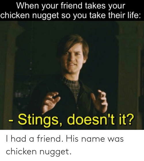 chicken nugget: I had a friend. His name was chicken nugget.