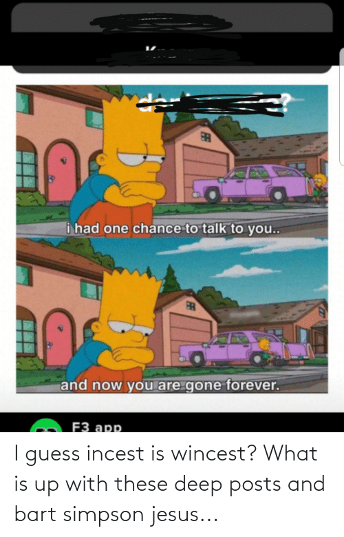 Bart Simpson: i had one chance to talk to you...  and now you are gone forever.  F3 app  FE I guess incest is wincest? What is up with these deep posts and bart simpson jesus...