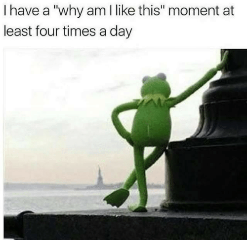 """Day, Why, and Moment: I have a """"why am I like this"""" moment at  least four times a day"""