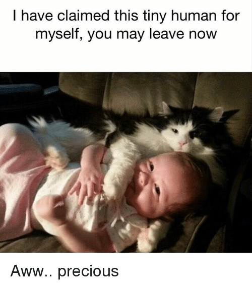 Aww, Memes, and Precious: I have claimed this tiny human for  myself, you may leave now Aww.. precious