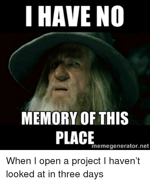 memegenerator.net: I HAVE NO  MEMORY OF THIS  memegenerator.net When I open a project I haven't looked at in three days