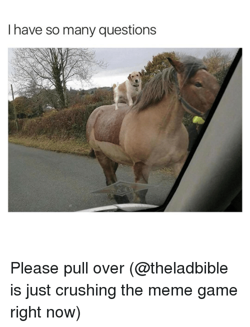 Meme Games: I have so many questions Please pull over (@theladbible is just crushing the meme game right now)