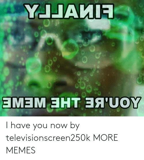 Have You: I have you now by televisionscreen250k MORE MEMES