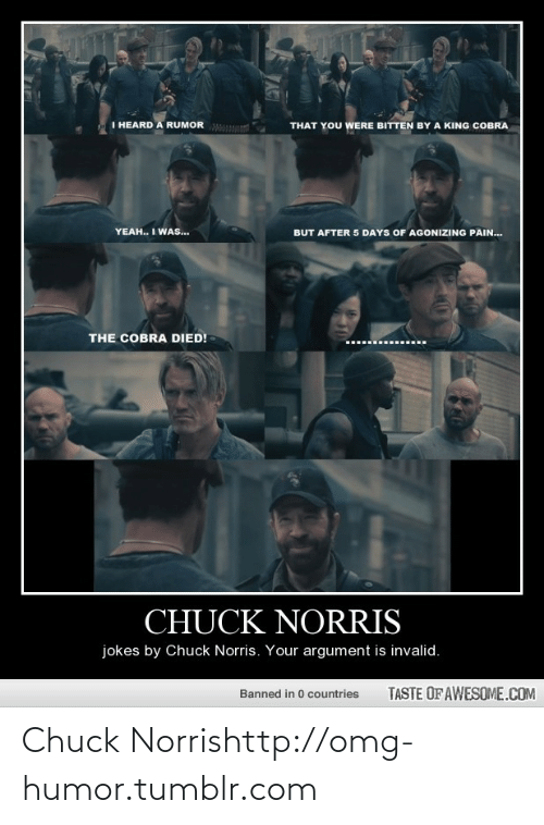 chuck norris jokes: I HEARD A RUMOR  THAT YOU WERE BITTEN BY A KING COBRA  YEAH.. I WAs...  BUT AFTER 5 DAYS OF AGONIZING PAIN.  THE COBRA DIED!  CHUCK NORRIS  jokes by Chuck Norris. Your argument is invalid.  TASTE OF AWESOME.COM  Banned in 0 countries  TACI Chuck Norrishttp://omg-humor.tumblr.com
