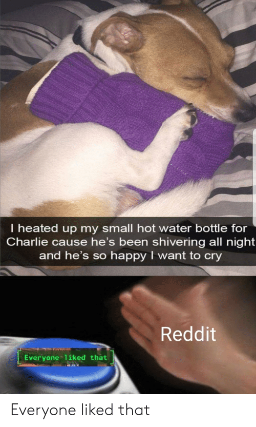Heated: I heated up my small hot water bottle for  Charlie cause he's been shivering all night  and he's so happy I want to cry  Reddit  Everyone 1iked that Everyone liked that