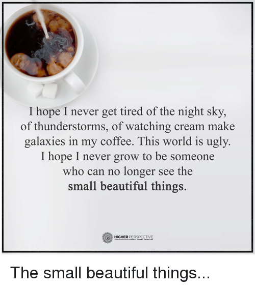 Thunderstorming: I hope I never get tired of the night sky,  of thunderstorms, of watching cream make  galaxies in my coffee. This world is ugly.  I hope I never grow to be someone  who can no longer see the  small beautiful things.  O HIGHER  PERSPECTIVE The small beautiful things...