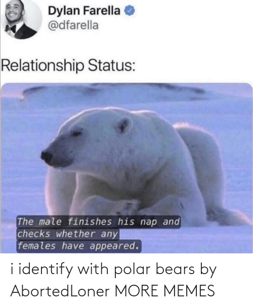 Bears: i identify with polar bears by AbortedLoner MORE MEMES