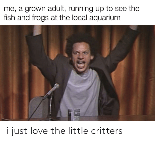 Little: i just love the little critters