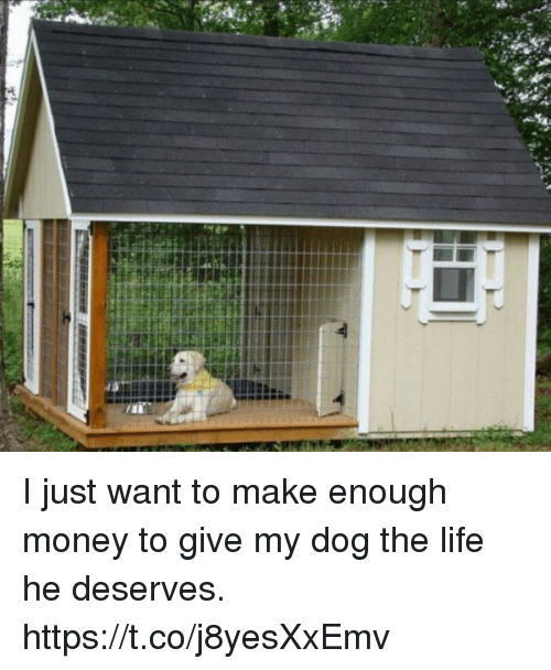 Life, Money, and Dog: I just want to make enough money to give my dog the life he deserves. https://t.co/j8yesXxEmv