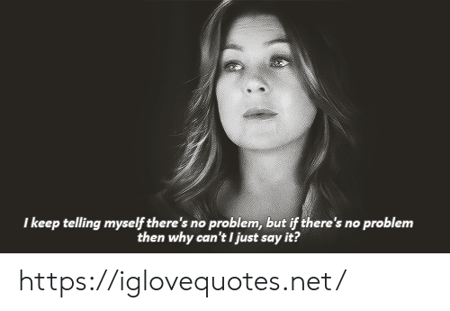 Say It, Net, and Why: I keep telling myself there's no problem, but if there's no problem  then why can't I just say it? https://iglovequotes.net/