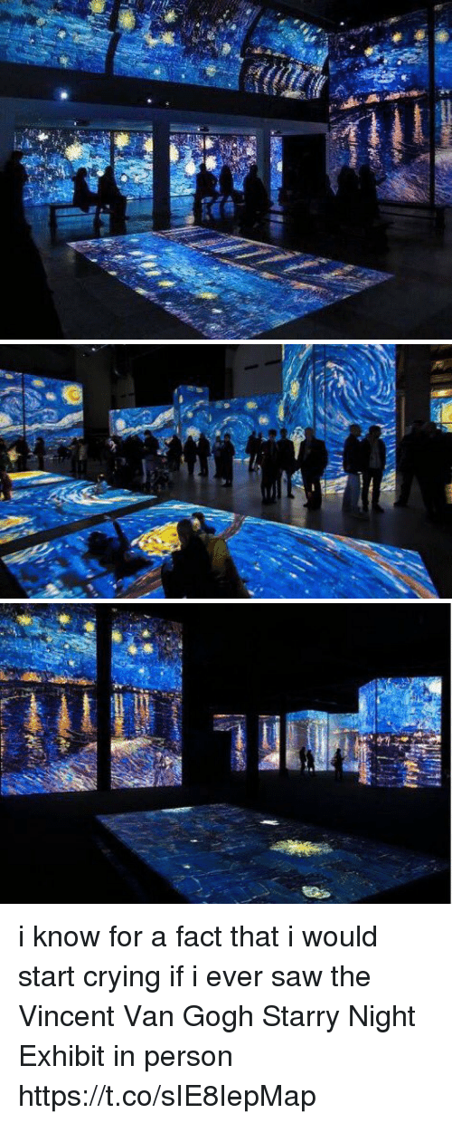 Vanning: i know for a fact that i would start crying if i ever saw the Vincent Van Gogh Starry Night Exhibit in person https://t.co/sIE8IepMap