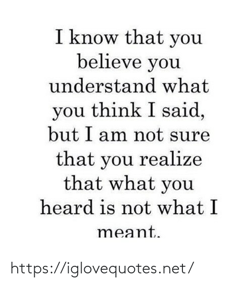 I Am Not: I know that you  believe you  understand what  you think I said,  but I am not sure  that you realize  that what you  heard is not what I  meant. https://iglovequotes.net/