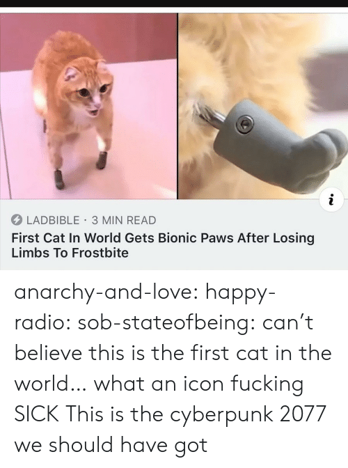 Fucking, Love, and Radio: i  LADBIBLE 3 MIN READ  First Cat In World Gets Bionic Paws After Losing  Limbs To Frostbite anarchy-and-love: happy-radio:  sob-stateofbeing: can't believe this is the first cat in the world… what an icon  fucking  SICK   This is the cyberpunk 2077 we should have got
