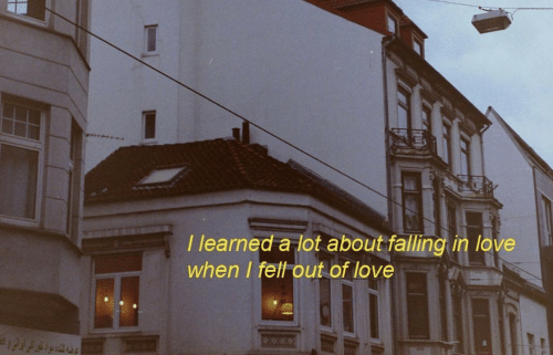 Love, Falling in Love, and In Love: I learned a lot about falling in love  when I fell out of love
