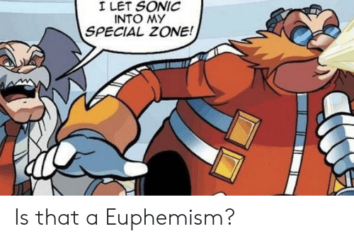 Euphemism: I LET SONIC  INTO MY  SPECIAL ZONE! Is that a Euphemism?