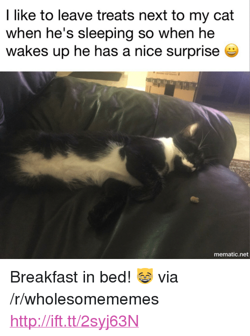 "Breakfast In Bed: I like to leave treats next to my cat  when he's sleeping so when he  wakes up he has a nice surprisee  mematic.net <p>Breakfast in bed! 😸 via /r/wholesomememes <a href=""http://ift.tt/2syj63N"">http://ift.tt/2syj63N</a></p>"