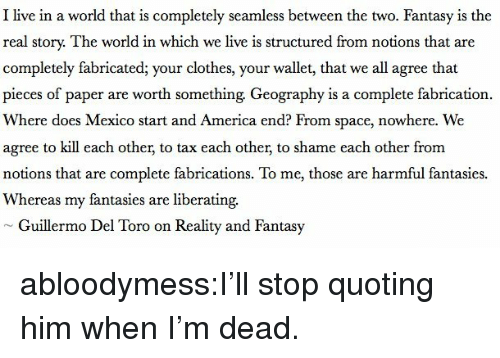 America, Clothes, and Target: I live in a world that is completely seamless between the two. Fantasy is the  real story. The world in which we live is structured from notions that are  completely fabricated; your clothes, your wallet, that we all agree that  pieces of paper are worth something Geography is a complete fabrication.  Where does Mexico start and America end? From space, nowhere. We  agree to kill each other, to tax each other, to shame each other from  notions that are complete fabrications. To me, those are harmful fantasies.  Whereas my fantasies are liberating.  Guillermo Del Toro on Reality and Fantasy abloodymess:I'll stop quoting him when I'm dead.