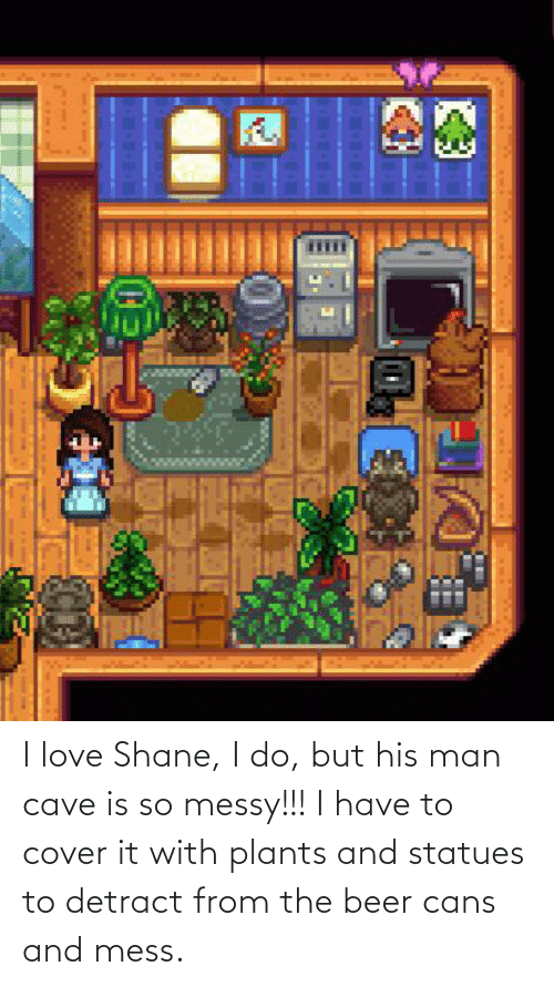 Shane: I love Shane, I do, but his man cave is so messy!!! I have to cover it with plants and statues to detract from the beer cans and mess.