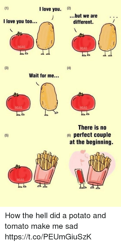 tomatos: I love you.  12)  ..but we are  different.  I love you too..  9GAG  9GAG  Wait for me...  9GAG  9GAG  There is no  6) perfect couple  at the beginning.  9GAG How the hell did a potato and tomato make me sad https://t.co/PEUmGiuSzK