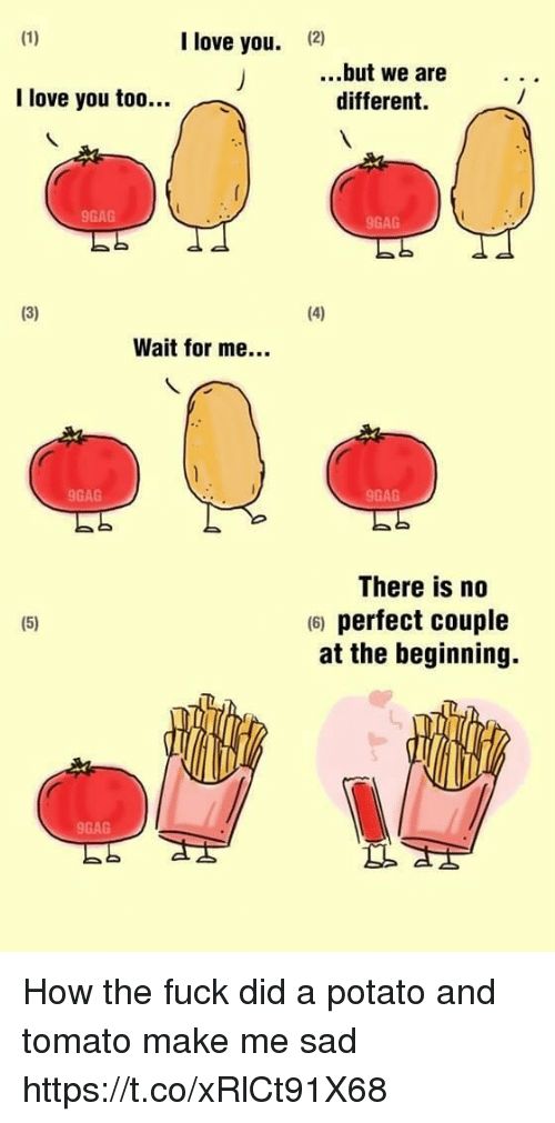 tomatos: I love you.  (2)  ...but we are..  I love you too...  different.  9GAG  9GAG  Wait for me...  9GAG  9GAG  There is no  6) perfect couple  at the beginning.  9GAG How the fuck did a potato and tomato make me sad https://t.co/xRlCt91X68