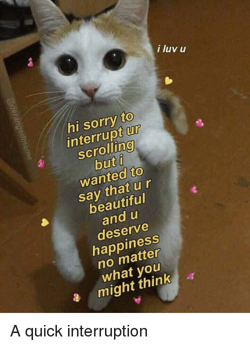 Interruption: i luv u  hi sorry to  interrupt ur  scrolling  but i  wanted to  say that ur  beautiful  and u  deserve  happiness  no matter  what you  a might think a A quick interruption