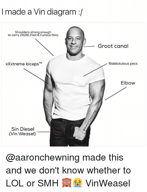 weasels: I made a Vin diagram  Shoulders strong enough  to carry 26281 Fast Furious films  xXxtreme biceps TM  Sin Diesel  (Vin Weasel)  Groot canal  Riddickulous pecs  Elbow @aaronchewning made this and we don't know whether to LOL or SMH 🙈😭 VinWeasel