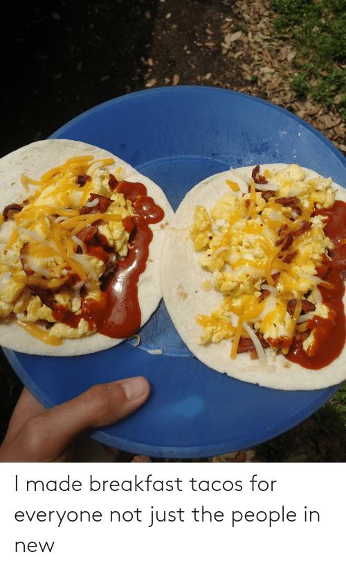 For Everyone: I made breakfast tacos for everyone not just the people in new