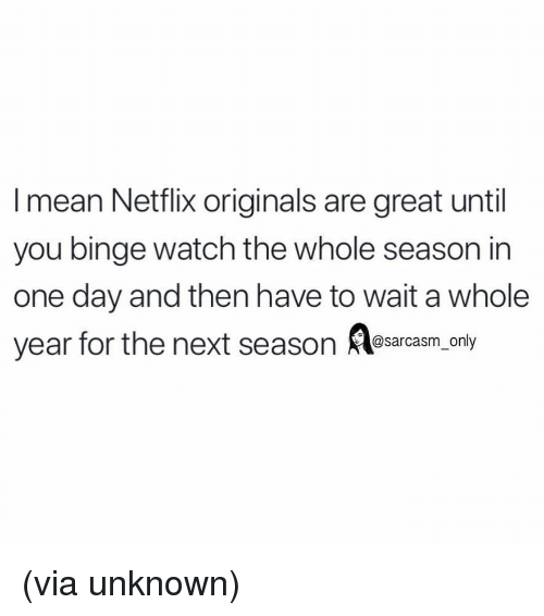 Funny, Memes, and Netflix: I mean Netflix originals are great until  you binge watch the whole season in  one day and then have to wait a whole  year for the next season es ly  sarcasm on (via unknown)