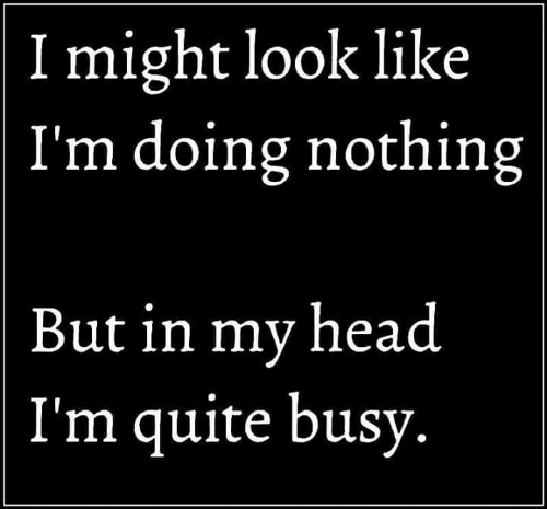 Head, Memes, and Quite: I might look like  I'm doing nothing  But in mv head  I'm quite busy.