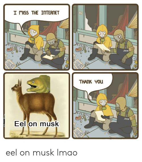 Internet, Lmao, and Thank You: I mISS THE INTERnET  JOHN  JOH  THANK YOu  JOHN  Eel on musk  e: eel on musk lmao