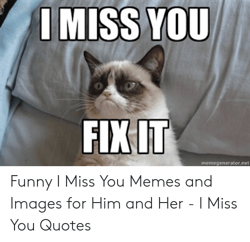 25 Best Memes About Funny Miss You Meme Funny Miss You Memes