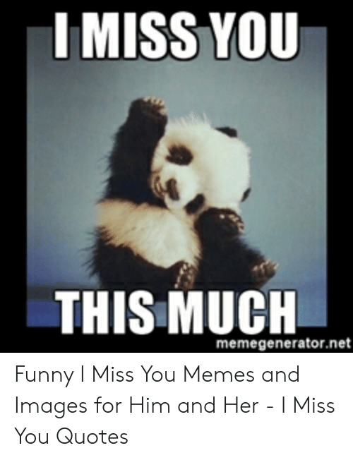 🐣 25+ Best Memes About I Miss You This Much | I Miss You This Much