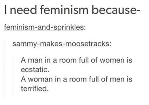 ecstatic: I need feminism because-  feminism-and-sprinkles:  sammy-makes-moosetrackS:  A man in a room full of women is  ecstatic  A woman in a room full of men is  terrified.