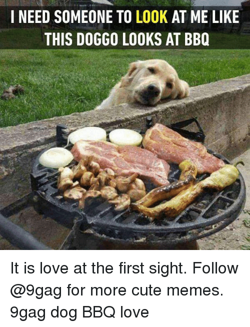 9gag, Cute, and Love: I NEED SOMEONE TO LOOK AT ME LIKE  THIS DOGGO LOOKS AT BBQ It is love at the first sight. Follow @9gag for more cute memes. 9gag dog BBQ love