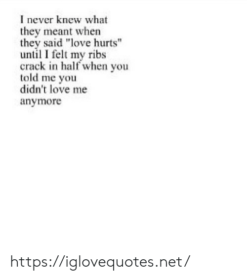 "they said: I never knew what  they meant when  they said ""love hurts""  until I felt my ribs  crack in half when you  told me you  didn't love me  anymore https://iglovequotes.net/"