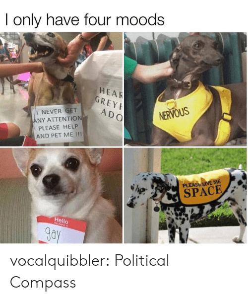 Please Give Me Space: I only have four moods  HEAR  GREY  ADO  I NEVER GET  ANY ATTENTION  PLEASE HELP  AND PET ME !!!  NERVOUS  PLEASE GIVE ME  SPACE  Hello  Gay vocalquibbler: Political Compass
