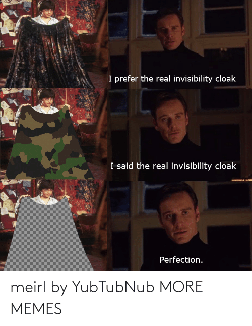 The Real: I prefer the real invisibility cloak  I said the real invisibility cloak  Perfection. meirl by YubTubNub MORE MEMES