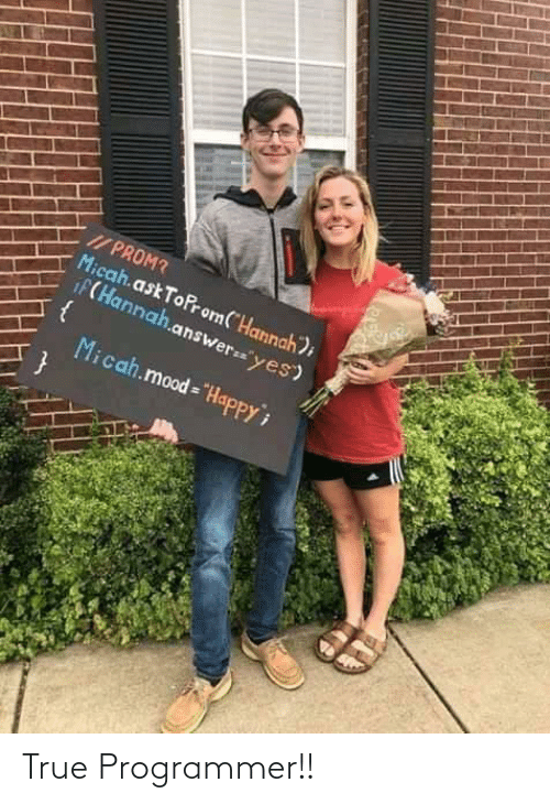 "prom: I/ PROM?  Micah.ask ToProm(""Hannah);  iF(Hannah.answer=""yes)  Micah.mood = ""HapPPY True Programmer!!"