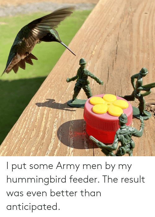 Result: I put some Army men by my hummingbird feeder. The result was even better than anticipated.