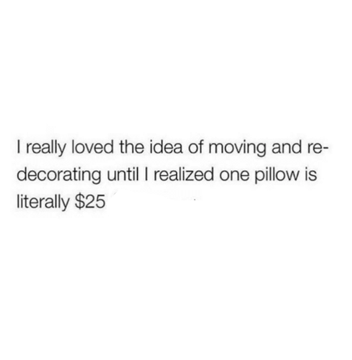 Relationships, Idea, and One: I really loved the idea of moving and re  decorating until I realized one pillow is  literally $25