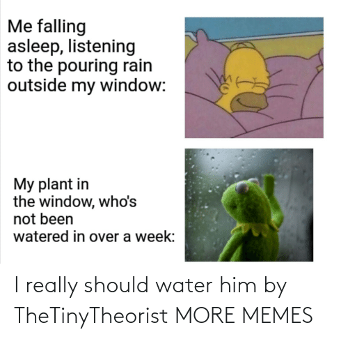him: I really should water him by TheTinyTheorist MORE MEMES