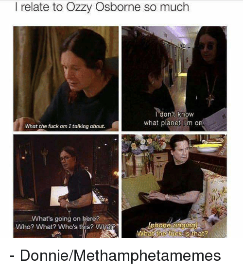 Memes, 🤖, and Ozzy: I relate to Ozzy Osborne so much  I don't know  what planet m on  What the fuck am Italking about.  What's going on here?  Who? What? Who's this? What?  What the fuck is that? - Donnie/Methamphetamemes