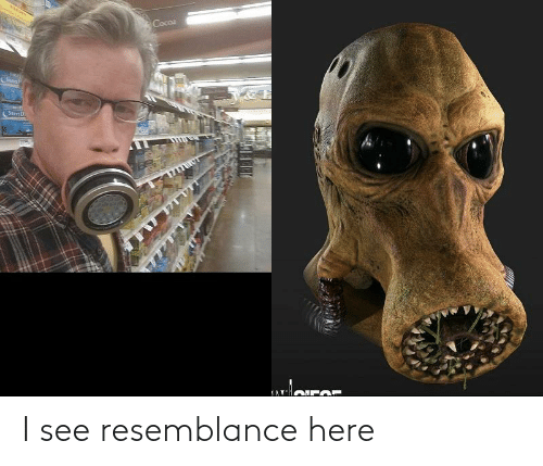 resemblance: I see resemblance here